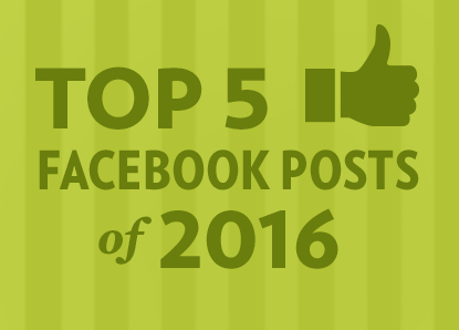 Top 5 Facebook posts of 2016